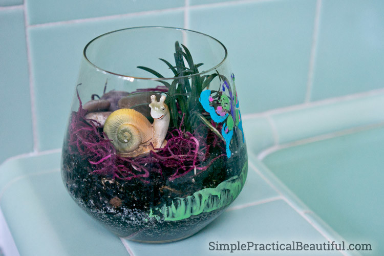Kids can make a terrarium