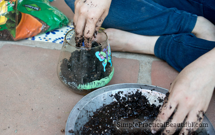 Put soil, charcoal, and gravel in the bottom of the terrarium