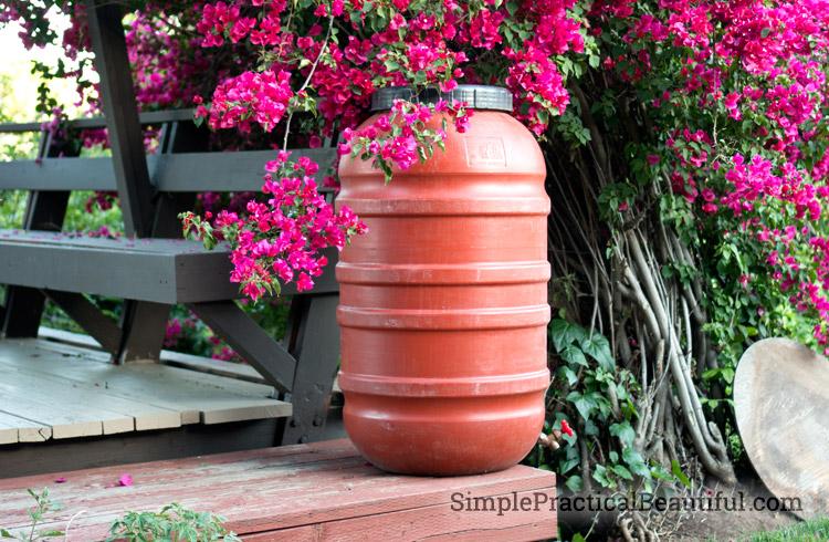 raised-rain-barrel