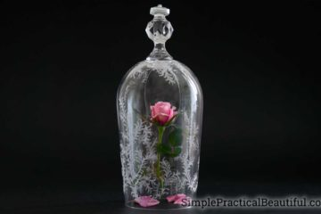 Beauty and the Beast rose | How to make the enchanted rose and cloche from Disney's movie | Etching a glass cloche