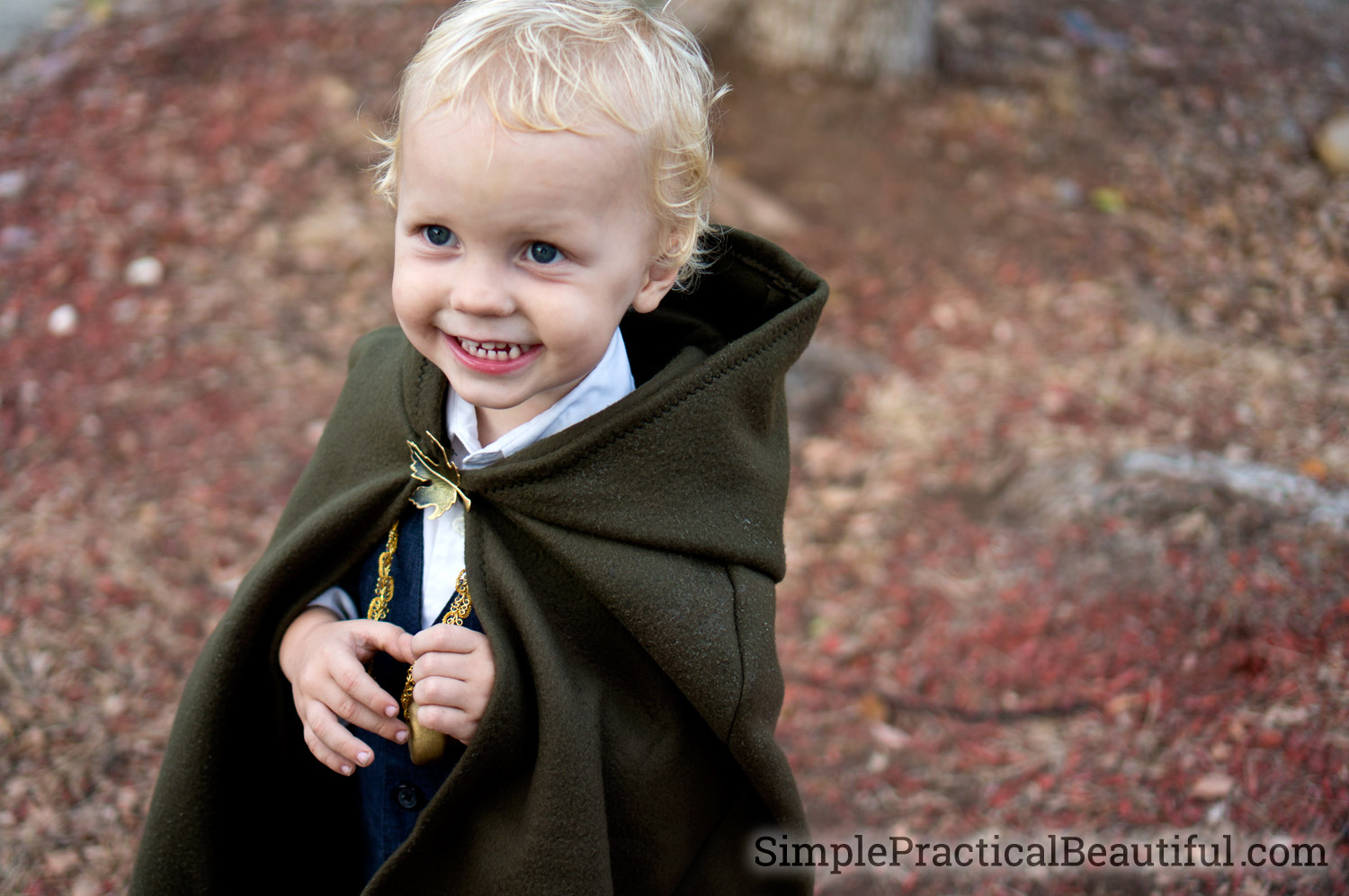 A Frodo Halloween costume perfect for a toddler