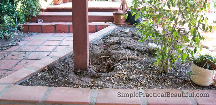 How to protect exposed wood outside