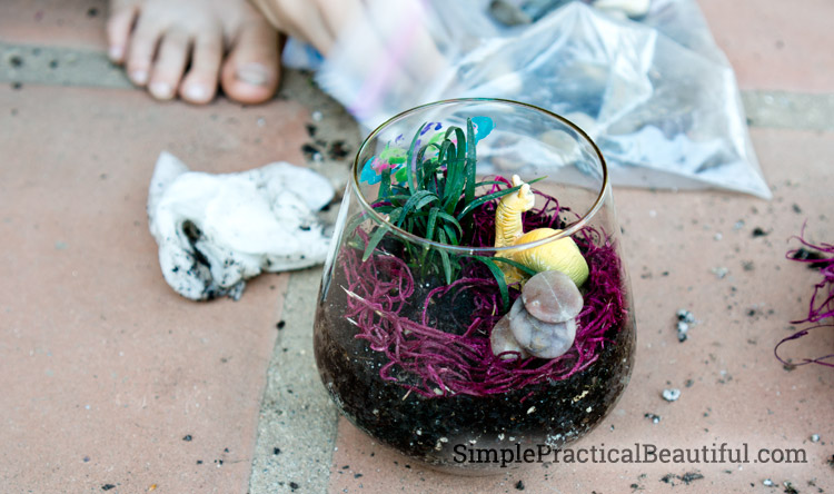 Adding rocks and decorations to the terrarium