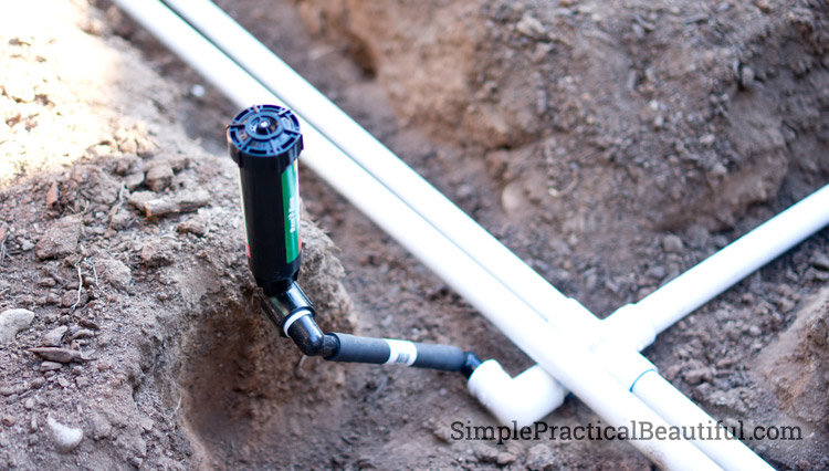 How To Install A Sprinkler System Part 2 Simple Practical Beautiful