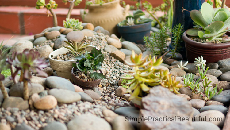 Learn how to use the 6 principles of art to design your garden or landscape