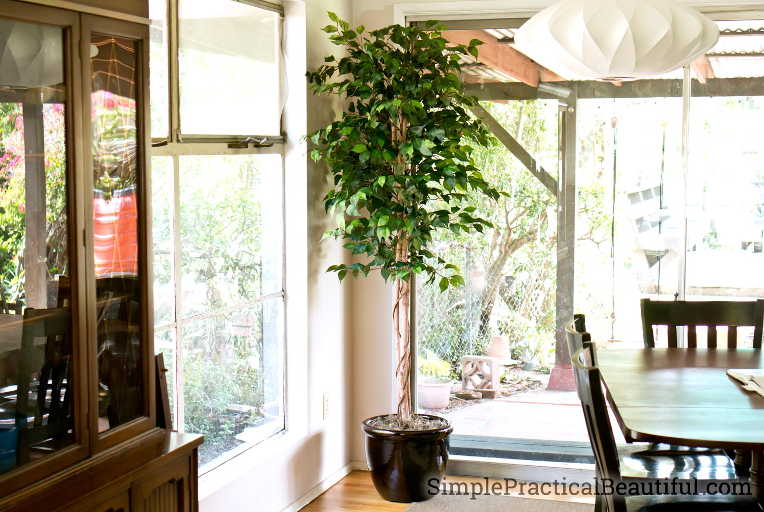 Using a silk tree to add greenery to a dining room