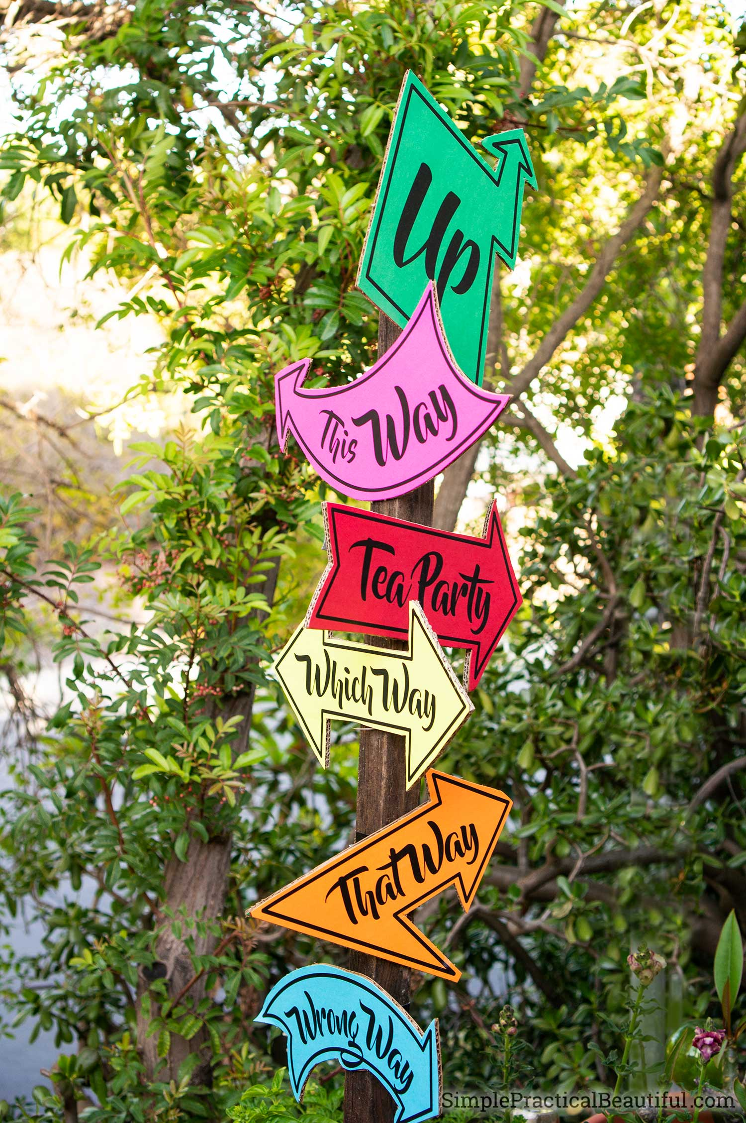 Alice in Wonderland party direction signs